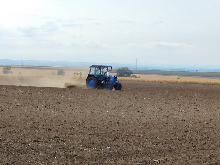 A kukorica aratását és a búza vetését is hátráltatja az eső